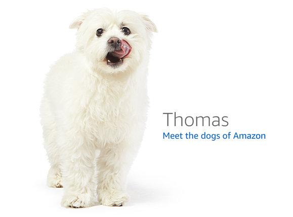 亚马逊广告有几种?如何做好亚马逊站内广告?