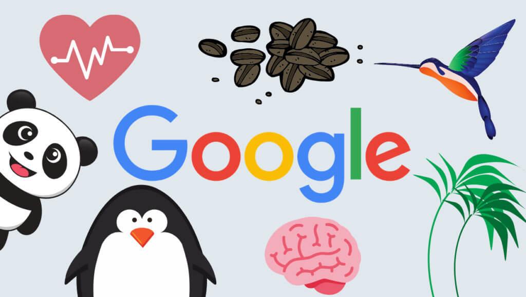 什么是Google算法?认识谷歌搜索引擎的3大算法