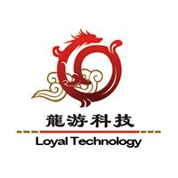 石家庄龙游科技有限公司