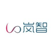 上海岚智网络科技有限公司